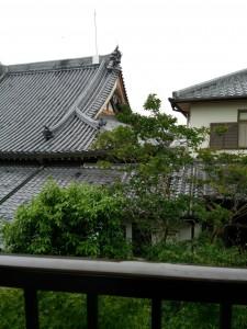 窓からはお寺と緑が見える景色