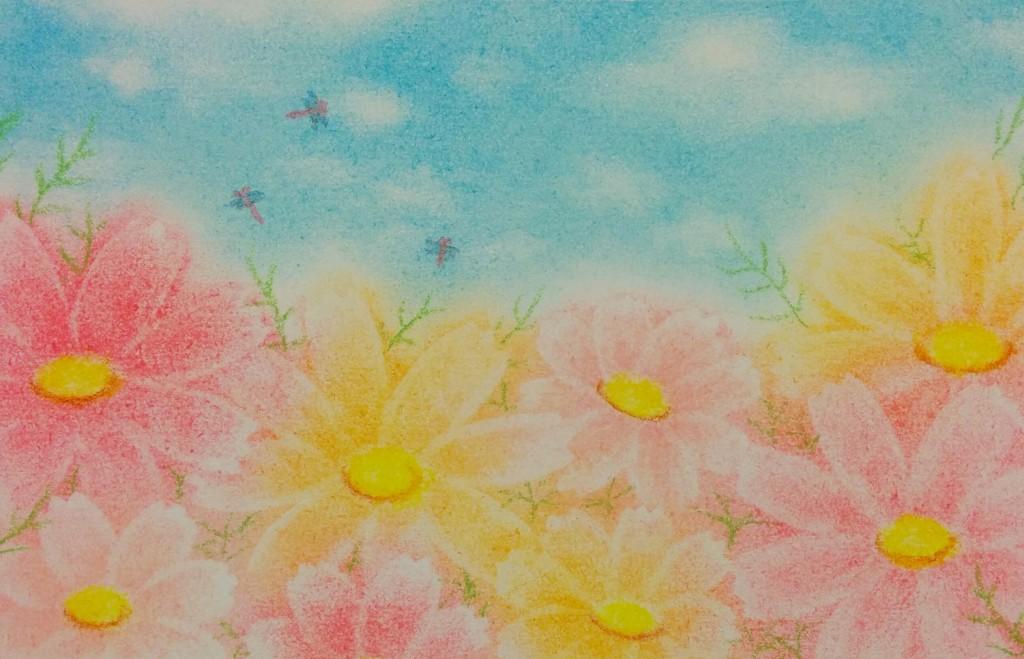 コスモスの咲く頃。パステルアート
