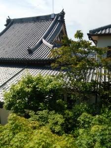 窓からお寺が見えます。