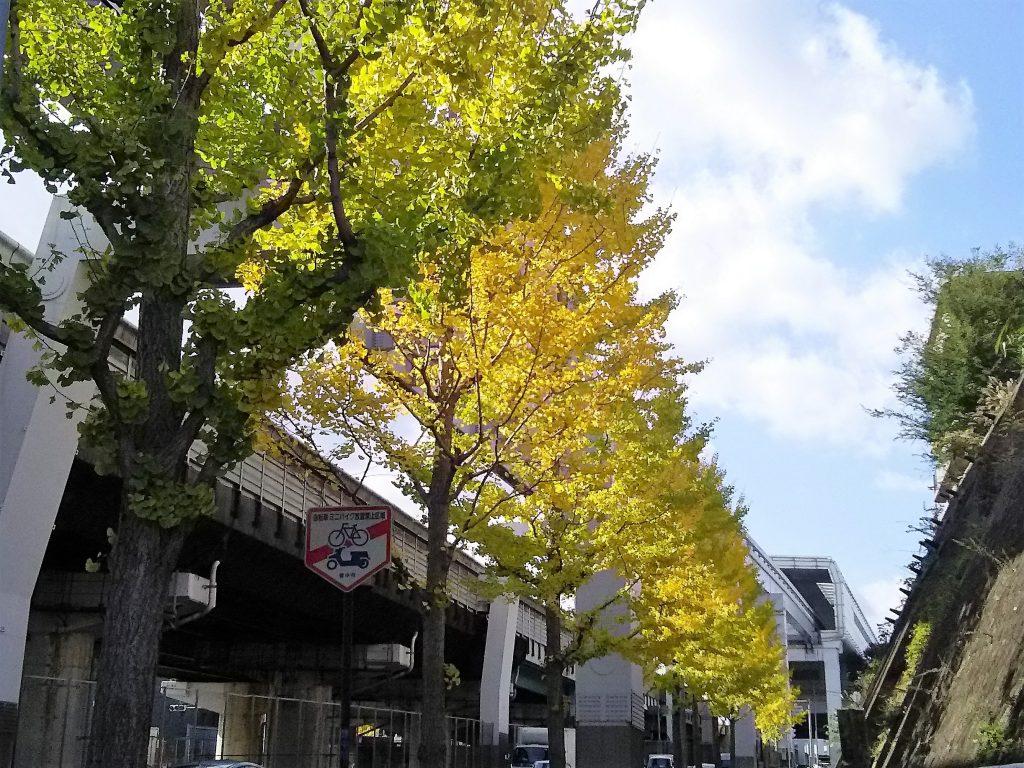 大阪モノレール柴原駅の高架
